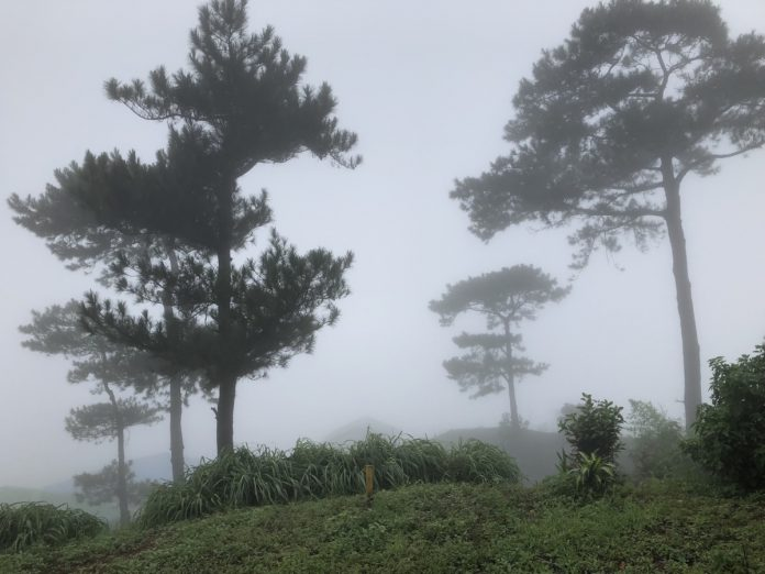 Baguio in The Fog – Temperate Weather